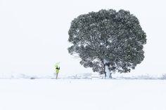 Snowy Landscape Image, Japan