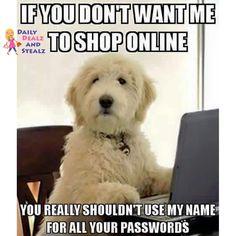 #cats #kittens #cats_of_instagram #selfie #f4f #catsnet #catlover #ilovecats #catloversclub #dogstargram #dogspupsworld #dogs #pup #eyes #instagood #dogs_of_instagram #animal #petstagram #petsagram #dogsitting #photooftheday #dogsofinstagram #ilovemydog #instagramdogs #dogoftheday
