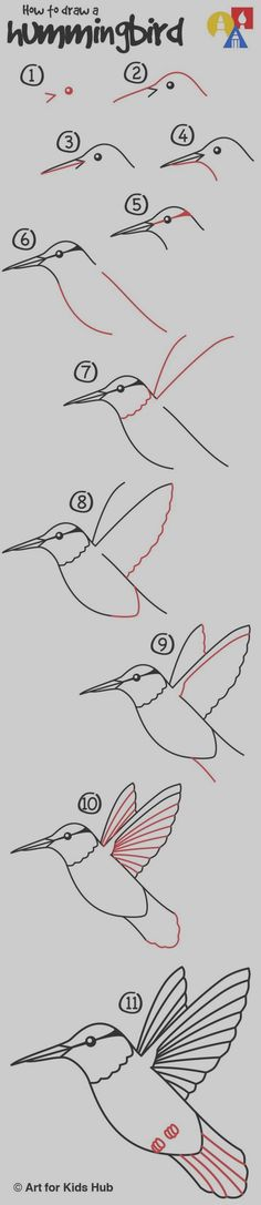 Easy Step by Step Art Drawings to Practice (5)