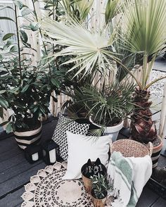 Serious case of jungle fever  Best balcony inspiration at @hm - now all we need is some sun and sangria, thankyouverymuch ☀️ #interior #wishlist