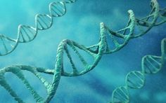 Rewriting the DNA of brain cells could help the body fight back against Alzheimer's disease, a new study suggests