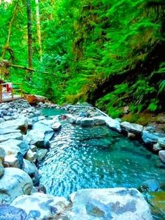 Terwilliger Hot Springs, Oregon - Amazing natural spot (clothing optional)