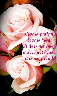 """Flowery Blessing: """"'Love is patient, love is kind. It does not envy, it does not boast, it is not proud.""""' ~1 CORINTHIANS 13:4"""