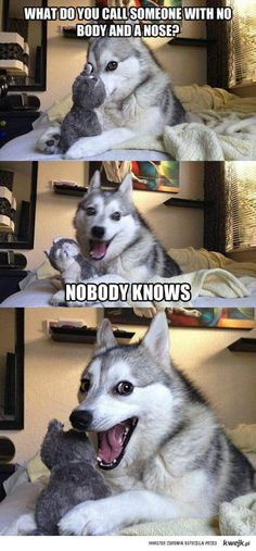 Can't believe I actually laughed out loud at this. Sooooo corny