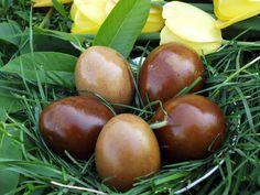 Cum vopsim ouale in mod natural? Fruit, Natural, Creative, Home, Nature, Au Natural
