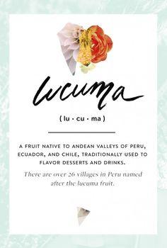 Wellness Encyclopedia: Lucuma Powder + A Superfood Chocolate Recipe | Free People Blog #freepeople