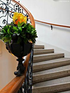 Blumengeländer - http://smg-treppen.de/blumengelaender/ Wie kann man Gäste im Treppenhaus willkommen heißen. Mit Blumen natürlich. Normalerweise stehen die Blumenstöcke immer auf der Treppe und versperren den Weg. Hier ein Beispiel wie es schöner und eleganter geht. Integrieren sie die Blumenhalterung direkt in das Geländer und gestalten sie das Blume...