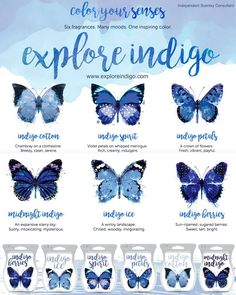 #Indigo #Scentsy Bars #exploreindigo with us and try this creative new approach to sensory experience.  Six new Indigo Collection bars all come together in a box for your Indigo experience!  https://sattler.scentsy.us