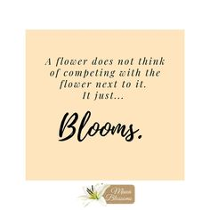 Seriously, be a flower #JustBloom... By doing just that, you give the next person the courage to do the same.  #MauaBlossoms #Florist #MidrandFlorist #Florista #BloomSquad #PetalPatrol #FlowerBoss #Bloomable #Blooms #Flowers #Bloom #BloomBox #BoxedRoses #BoxedFlowers #FreshFlowers #Roses #FlowerBossLady #KyalamiFlorist #WaterfallFlorist #BlueHillsFlorist #CarlswaldFlorist #FourwaysFlorist #SunninghillFlorist #StayAtHome #Lockdown #NoContactDelivery Box Roses, The Next, Boss Lady, Fresh Flowers, Bloom, Instagram, Woodland Forest