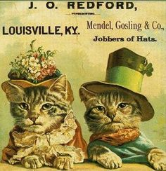 Poster Cats with Hattitude!