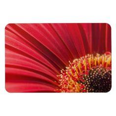 Red Macro Gerbera Daisy Flower Rectangular Magnet $6.70