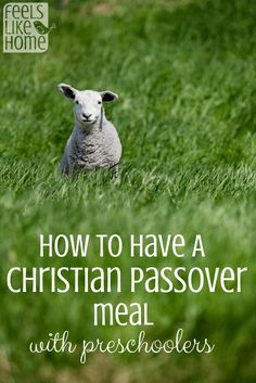 Lots of Christians honor the Passover with a special meal or seder. The parents read scripture while the kids help to remember all the special foods. Includes a script that families with or without children could use to commemorate The Last Supper together.