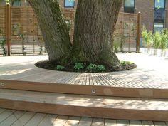 Terrasse sur mesure arrondie intégrant un arbre à Limal