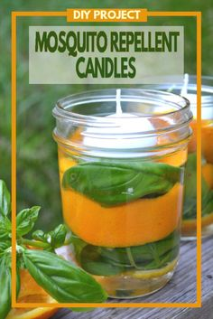 All-Natural Mosquito Repellent Candles - A few simple ingredients, a mason jar and a few minutes of time is all you need to keep those pesky mosquitoes away. Mosquito Yard Spray, Diy Mosquito Repellent, Natural Mosquito Repellant, Mosquito Repelling Plants, Insect Repellent, Bug Repellent Candles, Citronella Candles, Diy Candles, Homemade Candles
