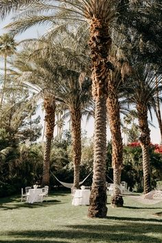 La Tavola Fine Linen Rental: Tuscany White | Photography: Katherine Ann Rose Photography, Planning & Design: The Lynden Lane Co, Florals: Paul Fenner Floral Design, Venue: Parker Palm Springs, Lighting: Amber Event Production, Rentals: Hire Elegance