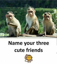 Sanjana,Amrita and Vrushti Happy Girl Quotes, Bff Quotes Funny, Besties Quotes, Crazy Girl Quotes, Girly Quotes, My Best Friend Quotes, Miss My Best Friend, Funny School Jokes, Some Funny Jokes