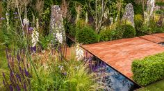 See Streetscape's Summer in Sussex Garden at RHS Hampton Court Palace Flower Show / RHS Gardening