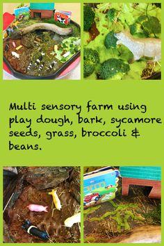 Multi sensory small world farm. Tuff Spot, Sycamore Seed, World Farm, Nursery Layout, After School Club, Small World Play, Animal Activities, Outdoor Learning, Farm Theme