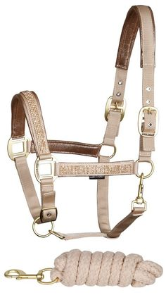 Harrys Horse Glam Halter - it's simple and classy, put your award winning horse in this, they'll look sophisticated af Equestrian Boots, Equestrian Outfits, Equestrian Style, Equestrian Problems, Horse Riding, Riding Boots, English Horse Tack, Horse Halters, Horse Gear