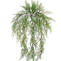 "24"" Maiden Hair Fern Bush in Green | Silk Flowers $6.49"
