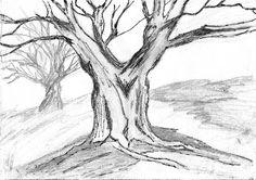 Tree Sketch.