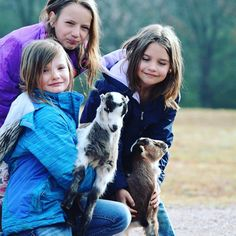Hanging with the #goats on the #homestead