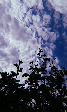Sky Aesthetic, Aesthetic Photo, Aesthetic Pictures, Shadow Photography, Tumblr Photography, Nature Photography, Cute Tumblr Wallpaper, Ft Tumblr, Shadow Photos