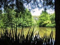 Giardino della LANDRIANA - Ardea