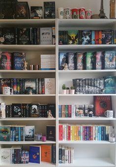 Got a second bookshelf