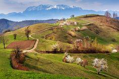 Dealuri și munți - Sorin Onișor ©