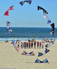 Kite Party in Huntington Beach