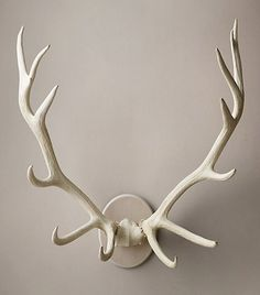 RH's Bleached Elk Antlers Cast in Resin:Ghostly white, this magnificent rack highlights the stark, sculptural beauty of elk antlers. Using molds made from naturally shed antlers, artisans cast them in resin and hand finish them for astonishing realism. Antler Mount, Antler Art, Elk Antlers, Deer Antlers Decor, Painted Antlers, Rustic Cabin Decor, Rustic Cabins, Lodge Decor, Log Cabins