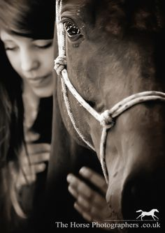 Expert Equestrian Articles - Dream Jobs: Horse Photographer in the English Countryside - Equitrekking