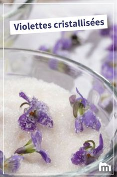 Violettes cristallisées /// #violettes #violet #sucre #pétales #marmiton #recette #cuisine Pudding, Toulouse, Desserts, Gummi Candy, Purple Food, Violets, Flowers, Gum Arabic, Marshmallow Yams