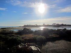 Malibu Lagoon, from the Adamson House, December 24, 2013.