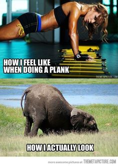 So true...my trainer has taken pictures during workouts and that's exactly my plank position (the bottom pic)