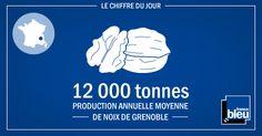 Le chiffre du jour sur francebleu.fr, une infographie géolocalisée :   12 000 tonnes = production annuelle moyenne de noix de grenoble