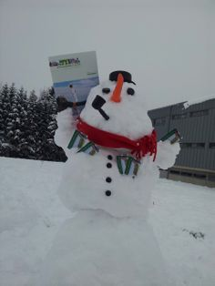 Treat yourself to some time out- let us invite you to experience real enjoyment in Thermen- & Vulkanland Styria. Snowman, Winter, Outdoor Decor, Winter Time, Snowmen, Winter Fashion