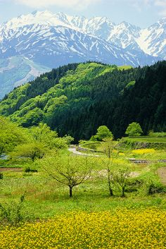 Northern Alps in Japan: photo by Go Uryu, via Flickr
