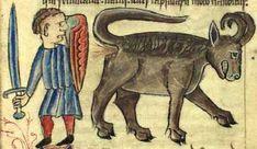 Il Bonnacon è un animale simile al toro, ma con le corna sono rivolte all'indietro. Per difendersi questo animale scappa, ma durante la fuga si lascia dietro una scia di escrementi corrosivi, che bruciano tutto ciò che toccano.  L'immagine superiore è tratta da il Bestiarium di Anne Walshe (Copenhagen, Kongelige Bibliotek Gl. kgl. Saml. 1633 4˚). Scritto in latino, di origine inglese, circa 1400-25.