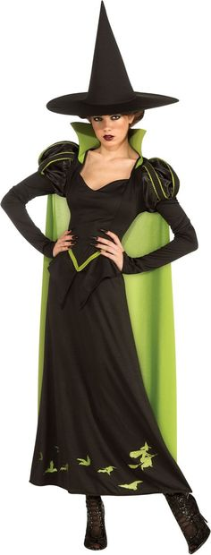 Adult Wizard of Oz Wicked Witch of the West Costume - Party City