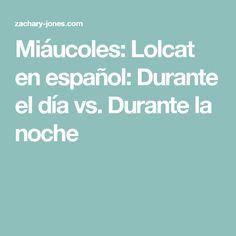 Miáucoles: Lolcat en español: Durante el día vs. Durante la noche