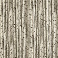 Birch Trees Fabric...I could make fun curtains with this