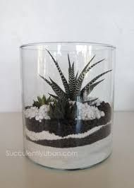 Image result for how to make sand art terrariums
