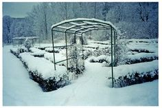Some motivation: the well-tended gardens of Rod Manor, an 18th-century estate in southeastern Norway, where vines are trained on a trellis, via Beyer.