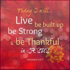 COLOSSIANS  2:6 - 7