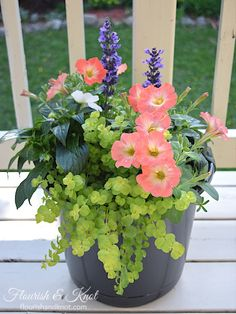 Blue, coral, white and green planter