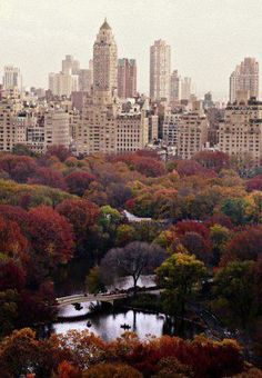Central Part ♥ New York, New York.