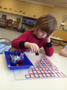 New Product from Montessori Science Solutions — Montessori Science Solutions