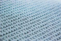 projecte genoma humà - Cerca amb Google